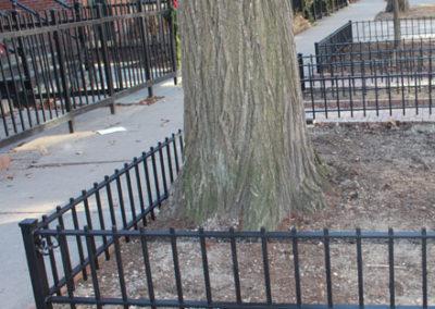 fences-pics-2