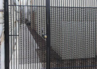 gates-pics-5